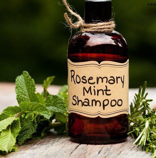 domácí bylinný šampon